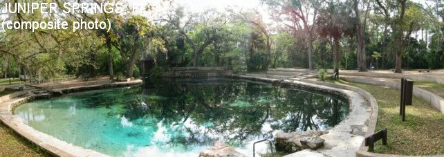 Swimmingholes Info Florida Swimming Holes And Hot Springs
