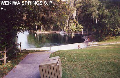 Florida Freshwater Springs Map.Swimmingholes Info Florida Swimming Holes And Hot Springs Rivers