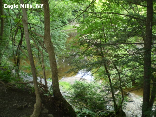Swimmingholes Info New York Swimming Holes And Hot Springs