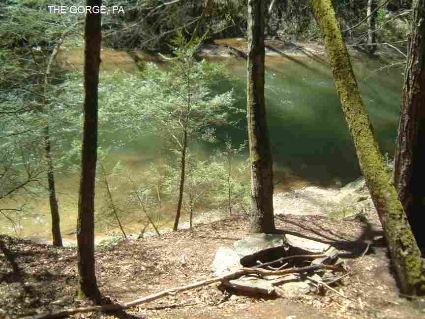 PHOTO SwimmingHolesinfo Pennsylvania Swimming Holes and Hot