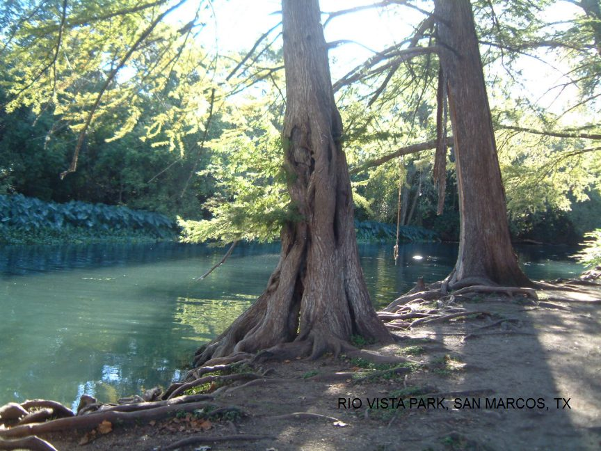SwimmingHoles.info Texas Swimming Holes and Hot Springs rivers creek ...